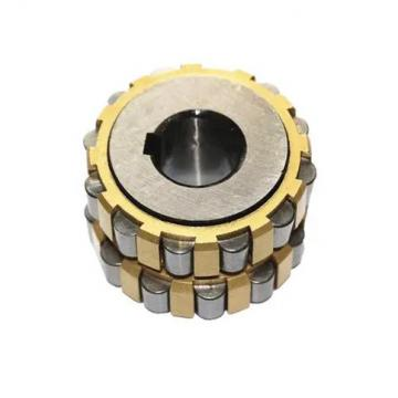65 mm x 140 mm x 33 mm  FAG NUP313-E-TVP2  Cylindrical Roller Bearings