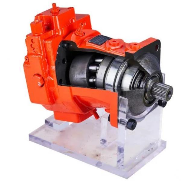 DAIKIN VZ63C12RJPX-10 Piston Pump VZ63 Series #2 image